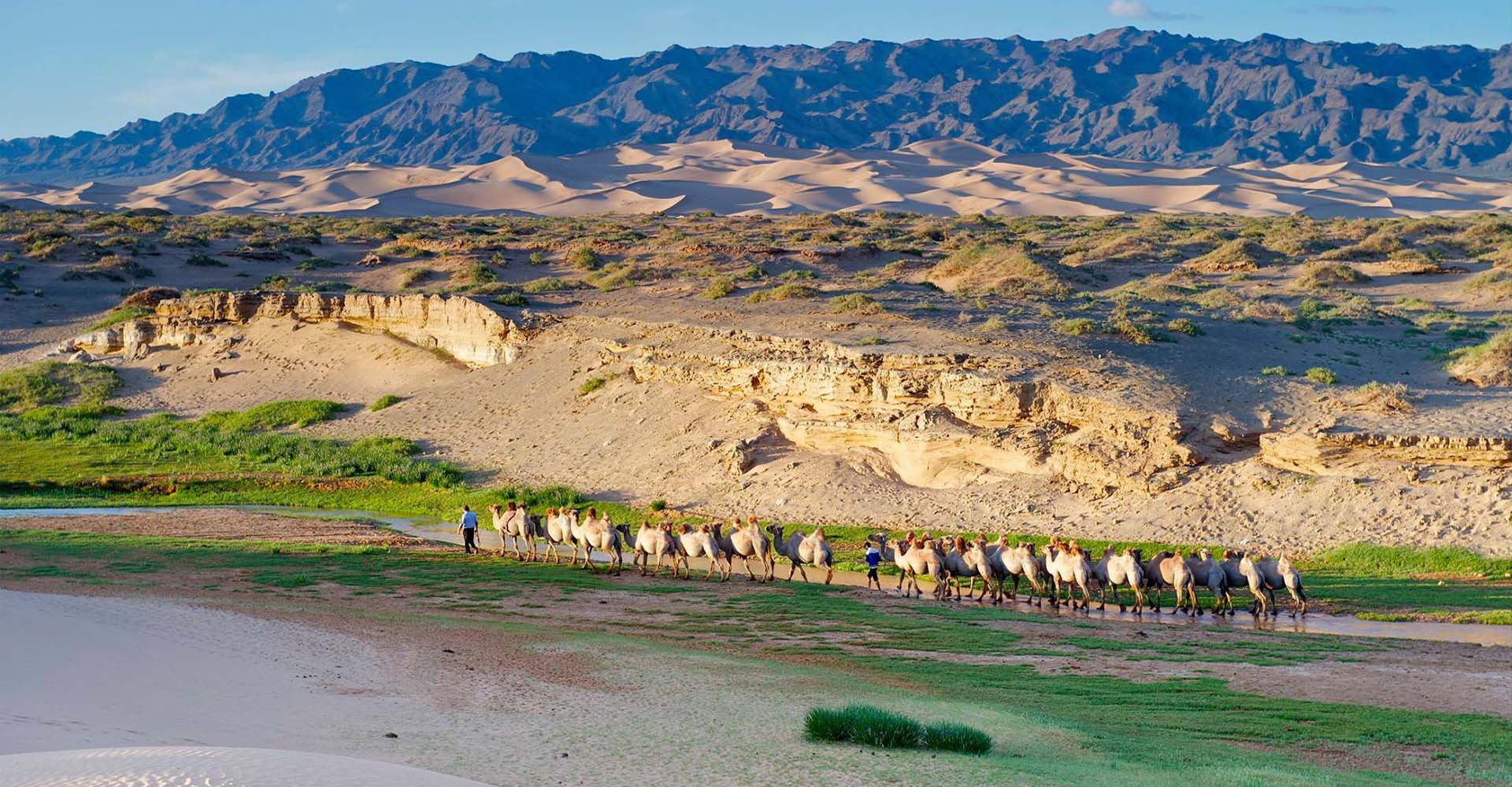 Southern Altai Gobi Strictly Protected Area