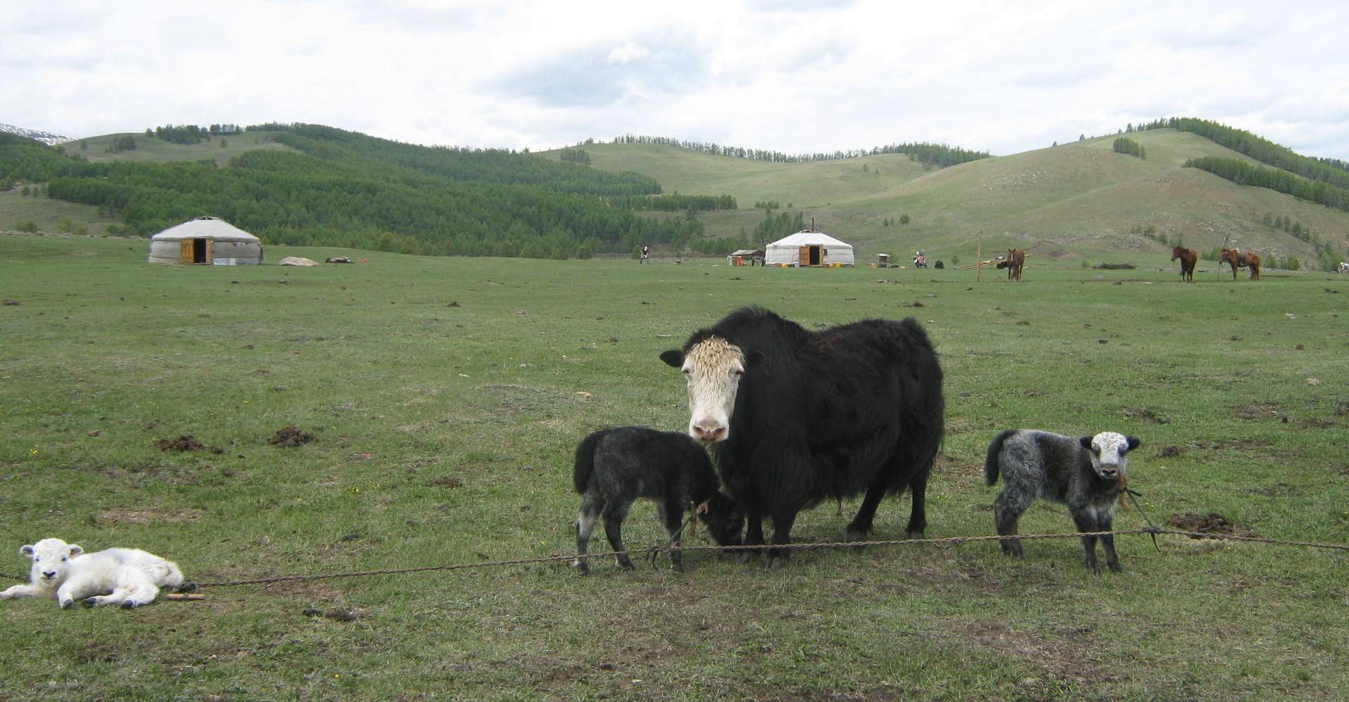 Baruunbayan-Ulaan